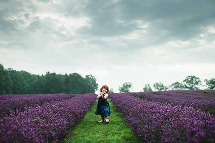 Young red haired girl cutely posed in blooming lavender field.