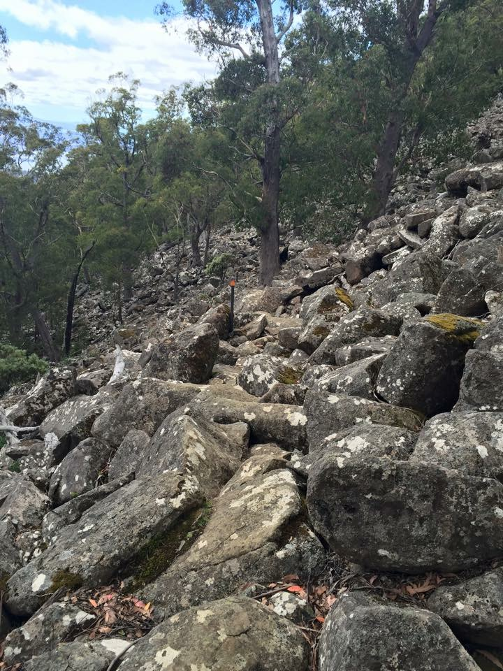 Lots of rock scree to walk on - Organ Pipes Track