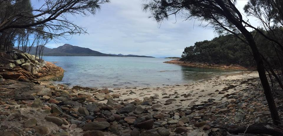 A small bay that we passed on Day 1 - Freycinet Circuit