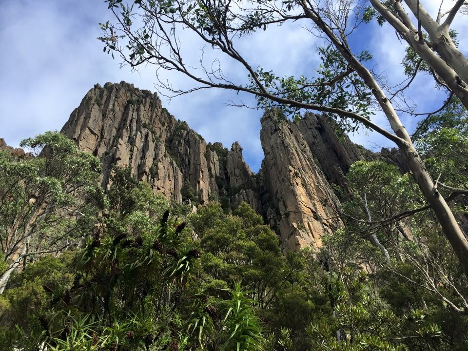 The majestical Organ Pipes
