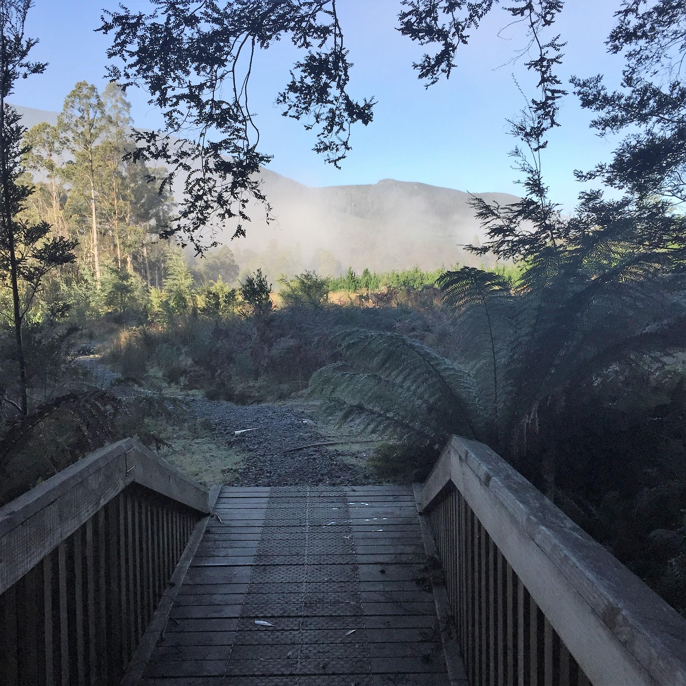 Start of walk, Marriot Falls