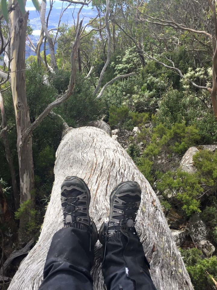 Another little break - Organ Pipes Track