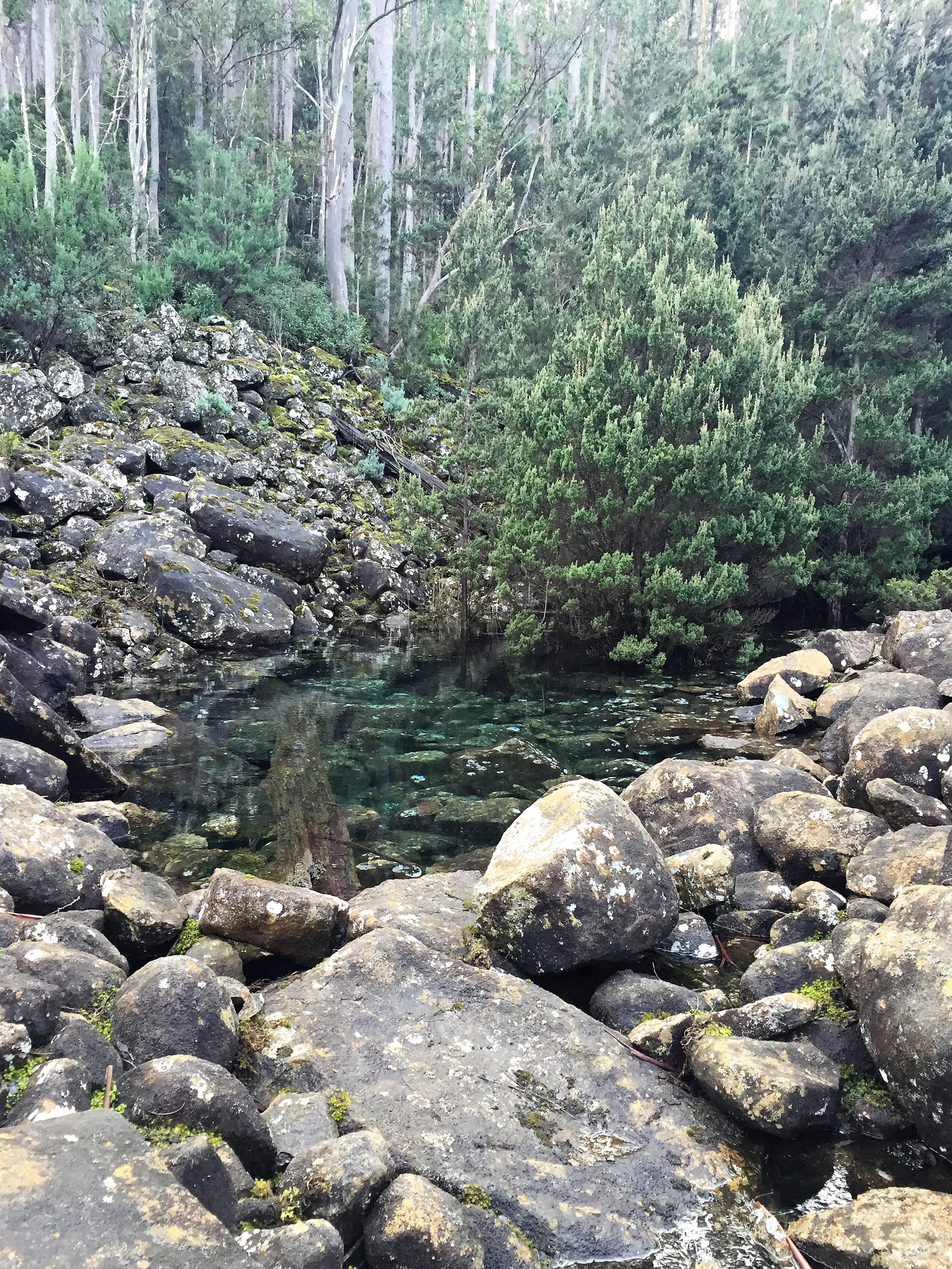The Disappearing Tarn