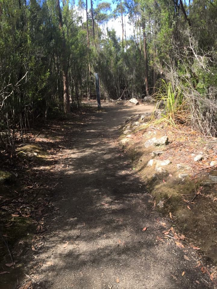 The easy walk back to the Springs via the Lenah Valley Track - Organ Pipes Walk