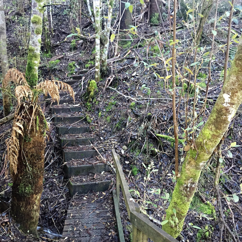 Steps, Marriot Falls