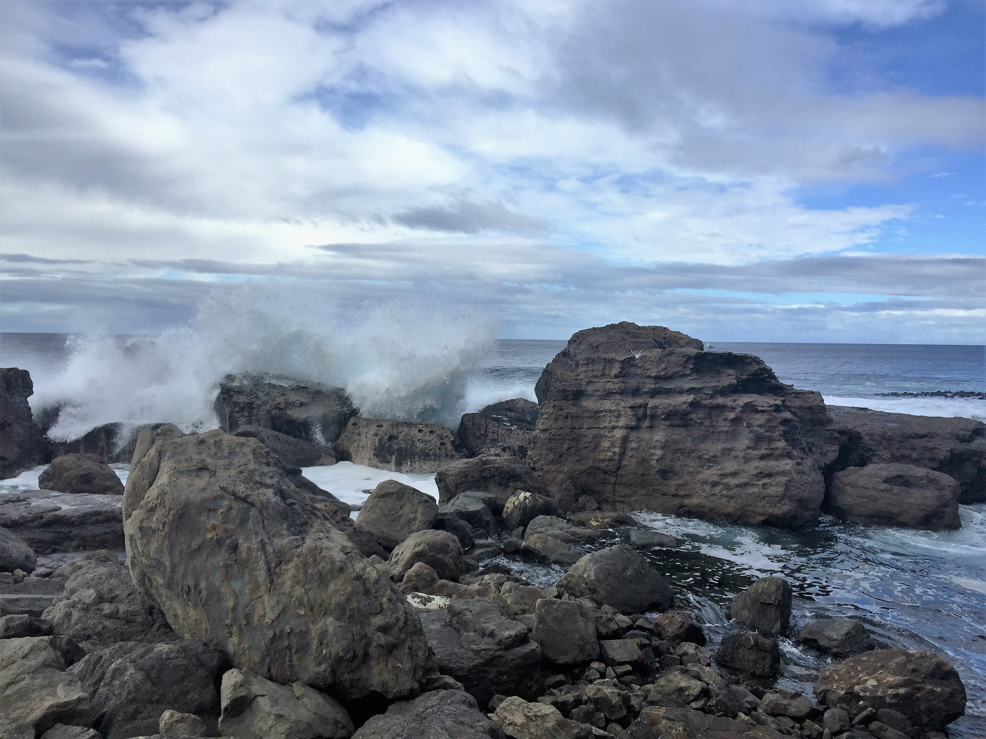 A surfers paradise - Shipstern Bluff