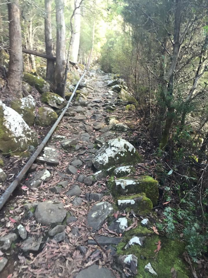 Ok the tracks starting to get a little bumpier now - Organ Pipes