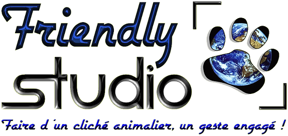Friendly Studio - Le photographe de votre animal de compagnie