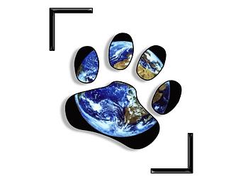 Dons à une Association de protection animale