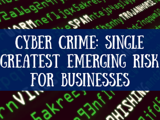 Cyber Crime: Single Greatest Emerging Risk for Businesses