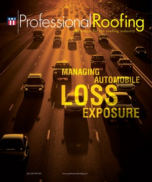 Professional Roofing July 2013