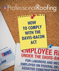 Professional Roofing - January 2012