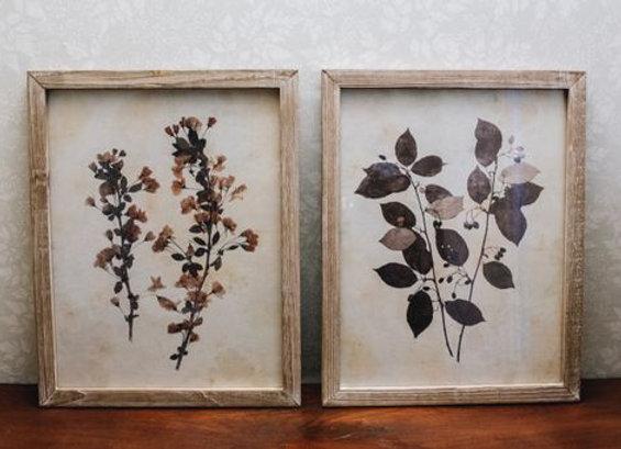 Pair of leaf prints