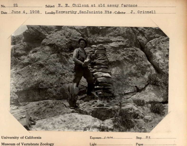 EE_Chilson_1908Assay.png