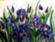 Wild Iris 5x7 print