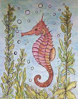 Seahorse 11x14