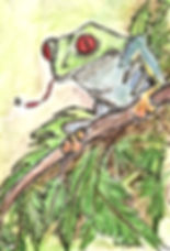Tree Frog Note Cards