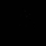 Aroha Nui Yoga Logo B.png