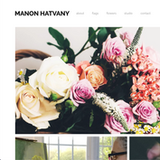 Manon Hatvany Art