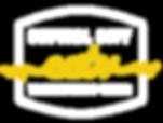 CCTV - Logo-21.png