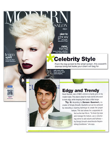 Modern Salon January 2012.jpg