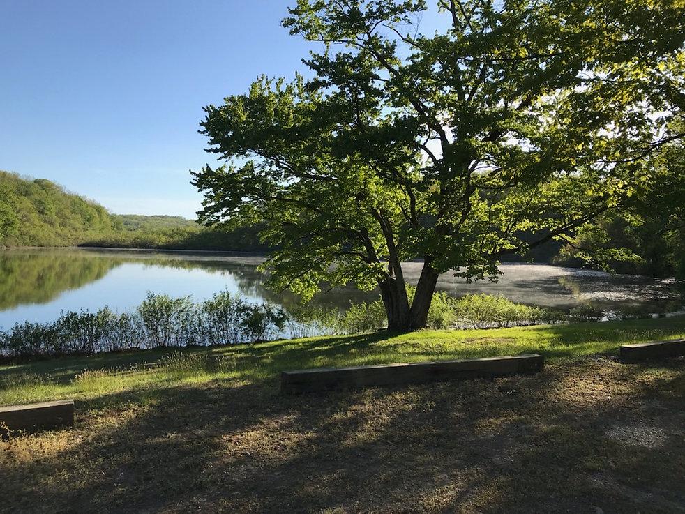 camp lake shadow.JPG