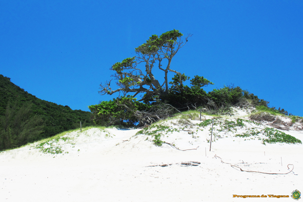 ARRAIAL DO CABO (5)