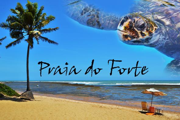 PRAIA DO FORTE (1)