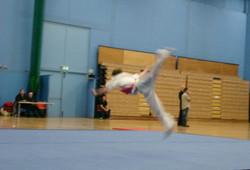 National Wushu Championships 2010