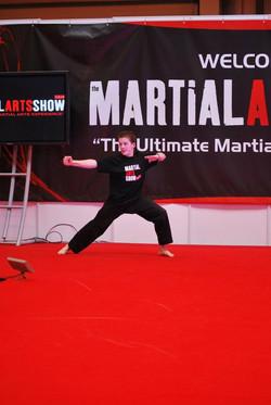The Martial Arts Show 2011