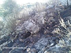 Φωτιά στο Κοτσανόπουλο - Δήμου Λούρου
