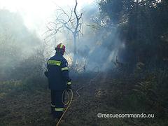 Πυρκαγιά στο Μύτικα Πρέβεζας
