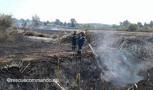 Συνδρομή σε πυρκαγιά στην Νέα Σαμψούντα