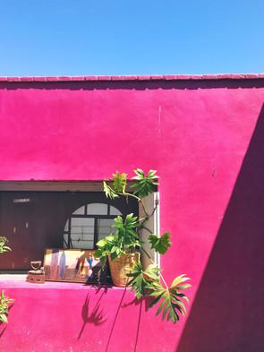 Baja Dreamland: Todos Santos Travel Journal