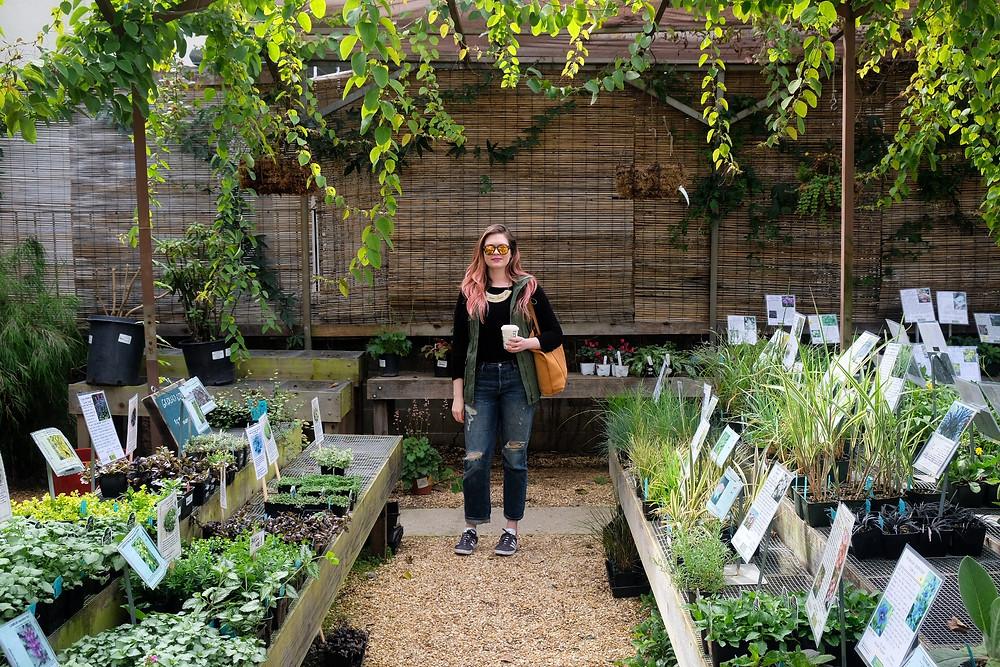 Plant nursery stroll