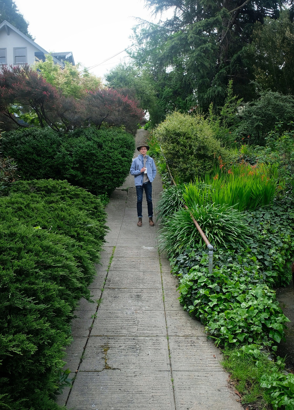 Shaded green trail