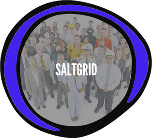 Saltgrid.png