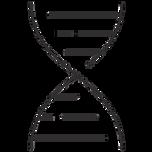 Genetic Counselors