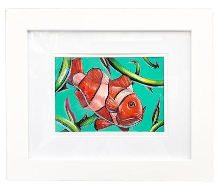 Clown Fish by Ivan Roque
