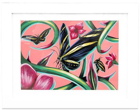 Zebra Butterfly by Ivan Roque