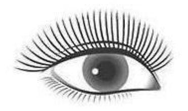Natural Eyelash Extension Snellville GA