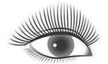 Cute Eyelash Extension Snellville GA
