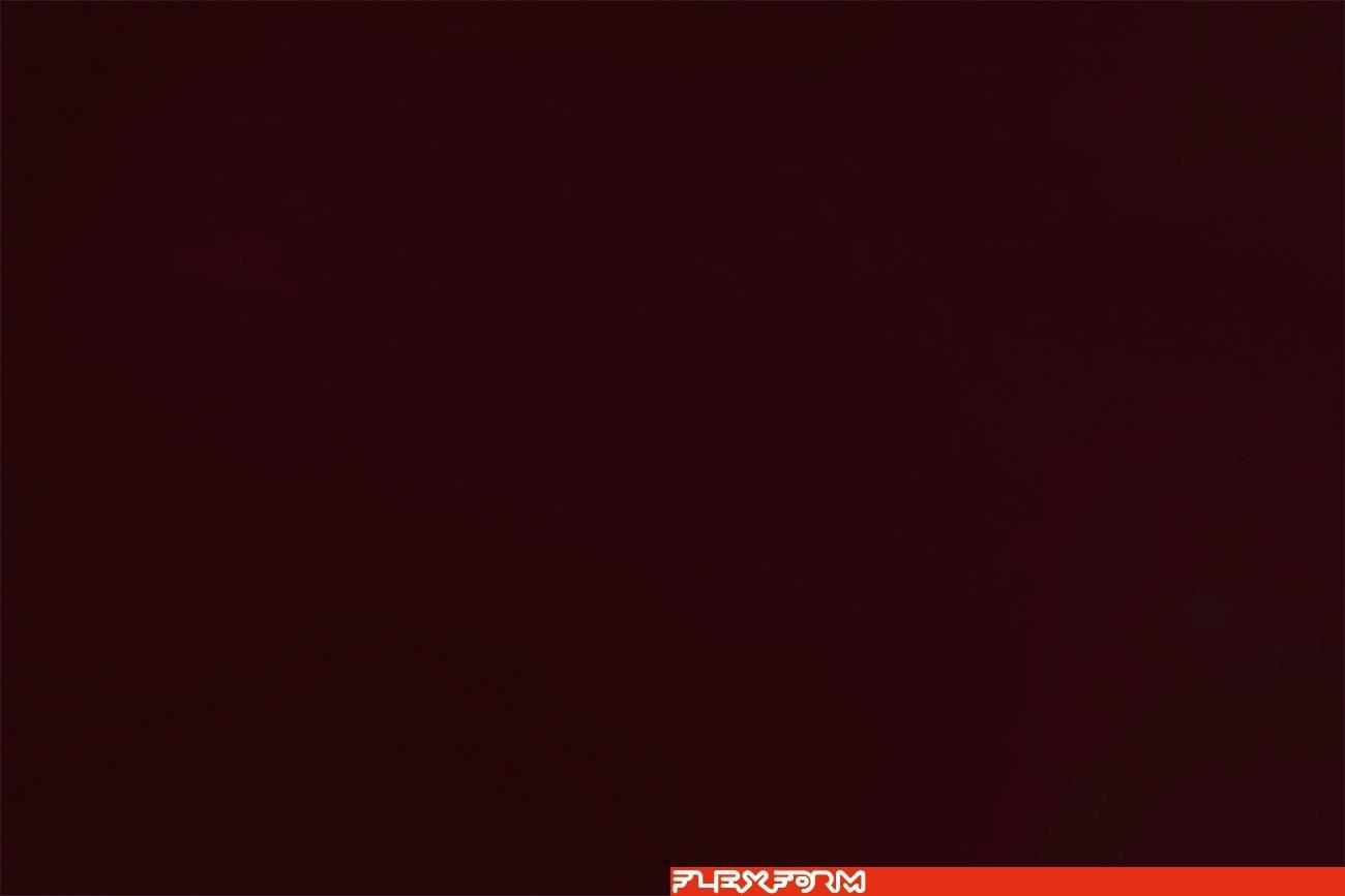 INOX AISI 316   WINE RED 405