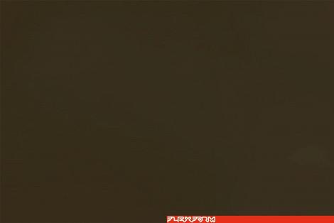 INOX AISI 316 | KHAKI GREEN 705