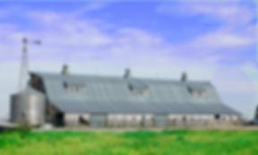 A large near 100 year old barn