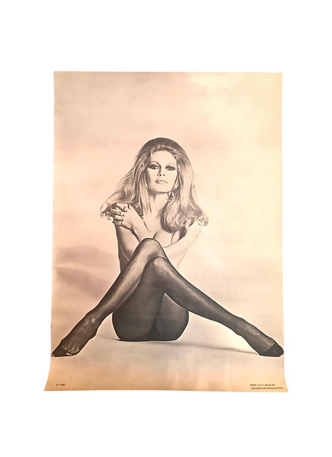 Classic Vintage Brigitte Bardot poster