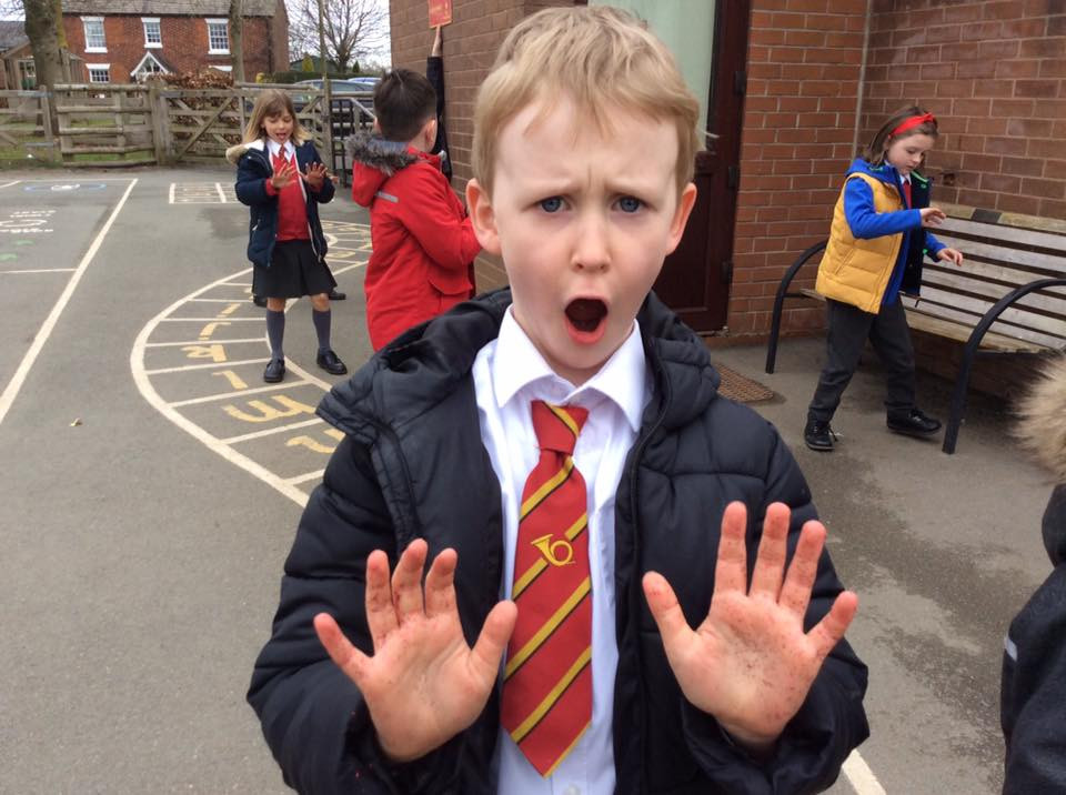 Y2 hand washing investigation 1.jpg