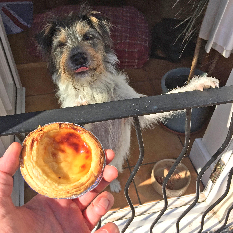 Percy custard tart