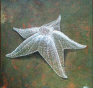 toile étoile de mer détourée.jpg