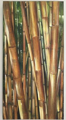 Bambous - Thierry Giangrasso